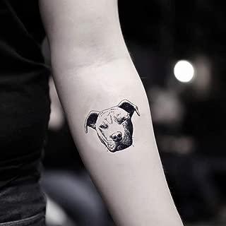 Pitbull Temporary Fake Tattoo Sticker (Set of 2) - www.ohmytat.com