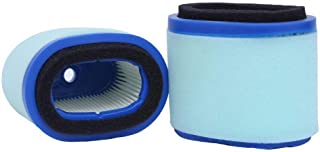 HEYZLASS 2Pack 697029 Oval Air Filter, Replace for Briggs Stratton 4207 5059 498596S OEM Air Cleaner, Lawn Mower Extend Life Series Air Filter and More, Plus 273356S Pre Filter