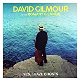 Yes, I Have Ghosts. [Vinilo]