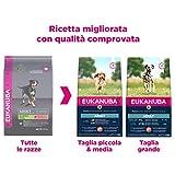 Zoom IMG-1 eukanuba cibo secco per cani