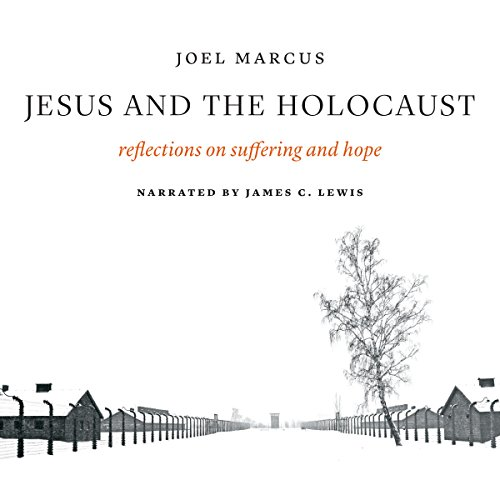 Jesus and the Holocaust cover art