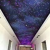 kingmaled 32W Fibra Ottica a soffitto Kit luci della Stella per la casa e Media Film Decor...