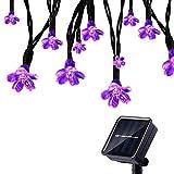 Tuokay Solar Lichterkette Außen 7m 50 LED 8 Modi Wasserdicht LED Außenlichterkette mit Blumen, Dekorative Beleuchtung für Garten Balkon Pavillon Terrasse Rasen Hof Zaun Hochzeit Deko (Lila)