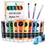 WOSTOO Peinture Acrylique, 13 Pièce Kit de Acrylique Couleurs, 10 x 120ml Pigment Acrylique Inclure 8 Couleur de Base, 2 Or et Argent Métallisé, 3 Pinceaux de Peinture pour Toile, Bois, Argile