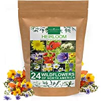 Wildflower seed packet