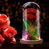 Beauty and The Beast Rose Enchanted Red Silk Rose LED Light in Glass Dome - Romantic Gift for Her, Movie Theme Party Wedding Decoration