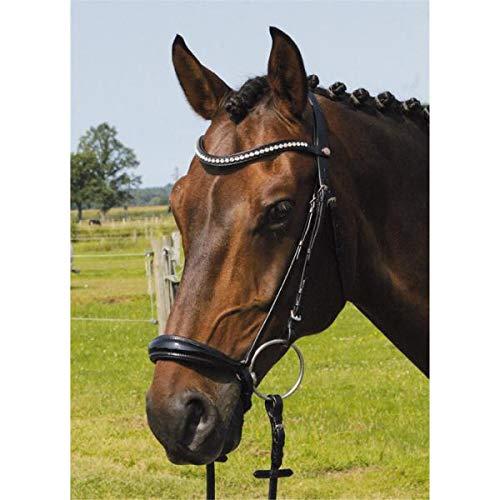 Hans Melzer Horse Equipment Trense Valluhn schwarz/silber hannoversches Reithalfter Full, schwarz/silber, Warmblut
