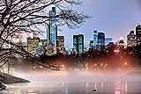 3D Diy Pintura Digital Por Números Manhattan Central Park Luces Del Árbol De La Noche Arte Moderno De La Pared Pintura En Lienzo Regalo Único De Navidad Decoración Del Hogar 30 * 40cm