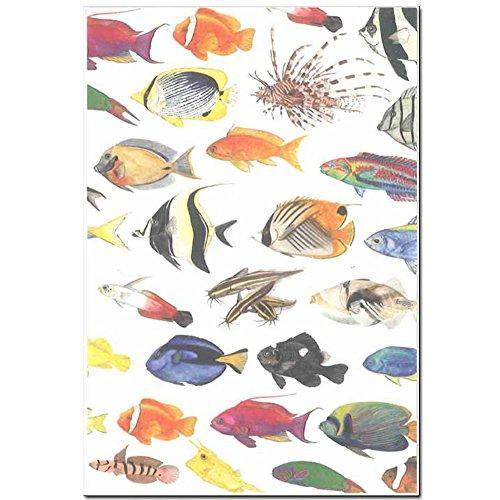 cicada 和紙はがき ばら売り 海シリーズ 魚 ポストカード 金目鯛 タツノオトシゴ 熱帯魚 伊豆 marineC
