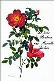 Livre du bonheur (Le) [ancienne édition]
