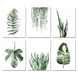 "Plant Green leaf Canvas prints Wall Art posters decor (Set of 6pcs)-Unframed-8""x10""Inch"