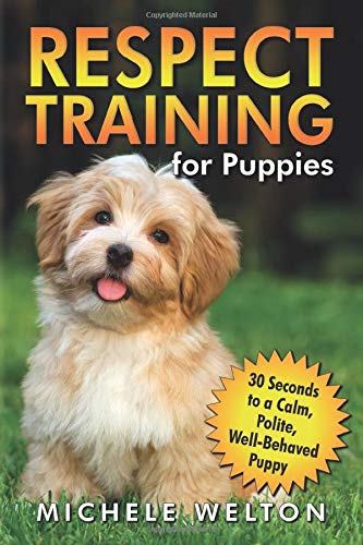 how to train a puppy to wee on puppy pads