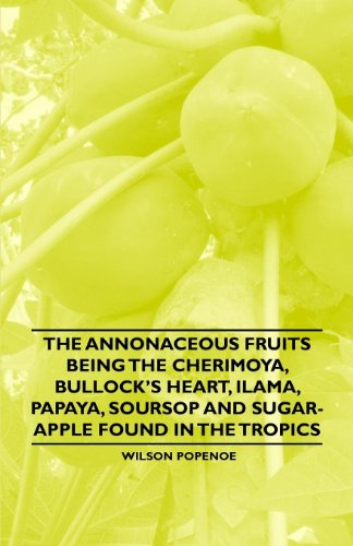 The Annonaceous Fruits Being the Cherimoya, Bullock's Heart, Ilama, Papaya, Soursop and Sugar-Apple Found in the Tropics (English Edition)