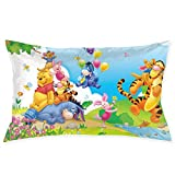 Meirdre Pillow Cases Winnie The Pooh Standard Pillow Covers 20'x 30'