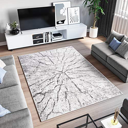 TAPISO Sky Tapis de Salon Chambre Ado Design Moderne Anthracite Gris Clair Moucheté Abstrait Moelleux Doux 200 x 300 cm