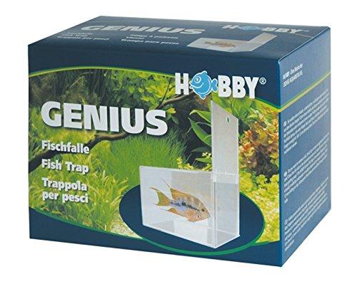 Hobby Genius