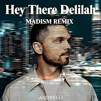 Hey There Delilah (Madism Remix)