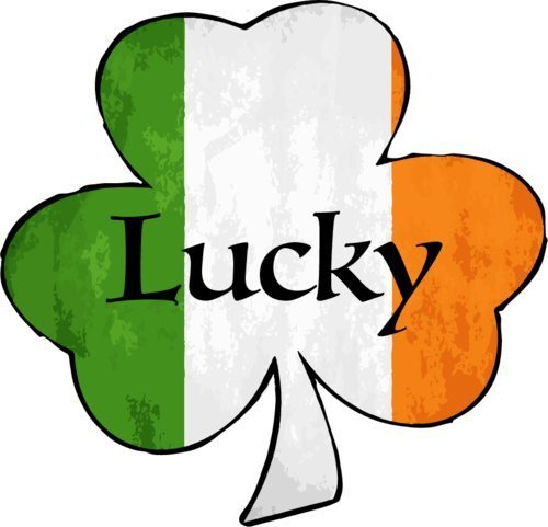 "ION Graphics Magnet Lucky Shamrock Vinyl - Irish Vinyl Magnet - Perfect Celtic Heritage Gift Size: 5.000"" x 5.000 inch"