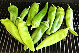 Anaheim Chili Pepper Meaty Chilies Stuffed Peppers