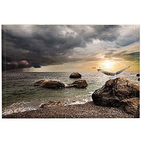 Ocean Bad tapijten door, regenstorm donkere wolken de instelling zon zee Mew op rots, antislip deurmat deurmat