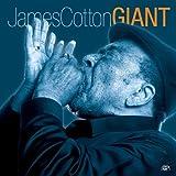 Songtexte von James Cotton - Giant