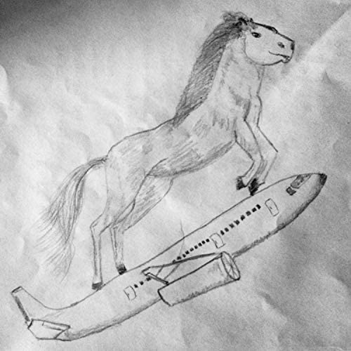 Horses on Airplanes