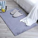 alfombra gris habitacion 60x120