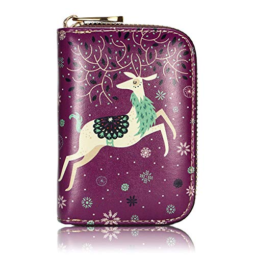 APHISON RFID Credit Card Holder Wallets for Women Leather Zipper Card Case for Ladies Girls/Gift Box (Purple-deer)