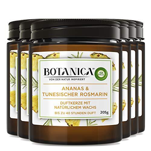 Botanica by Air Wick - Vela aromática con aroma de piña y romero tunecino, sostenible con ingredientes naturales, 6 velas en vaso