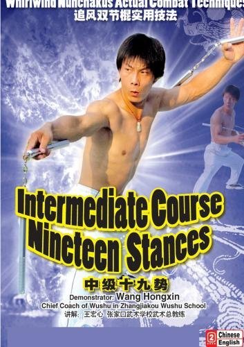 Secondary Nineteen Stances by Wang Hongxin