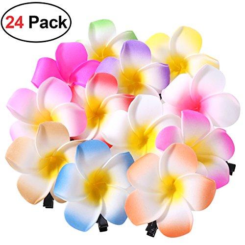 Frcolor 24 Stücke 2,4 Zoll Hawaiian Plumeria Blume Haarspange, Blumen Haarklammern Haarschmuck für Beach Party Hochzeit Dekoration (12 Farben)