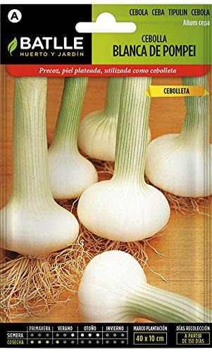 Semillas Hortícolas - Cebolla blanca de Pompei - Batlle