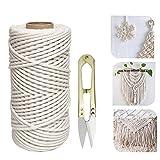 koitoy Hilo de macramé de algodón, 4 mm, 100 m, 100 % suave, para manualidades, manualidades, pared, colgador de plantas, fabricación de joyas, cordón de algodón (4 mm 100 m)