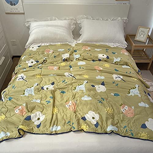 Meet Beauty EdredóN NóRdico Ligero Dibujos Animados de algodón pequeño Floral algodón de algodón Soltero/Doble Acolchado Impreso, Suave/cómodo/Ligero-B_200x230cm