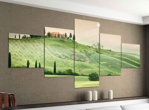 Acrylglasbilder 5 Teilig 200x100cm Landschaft Toskana Italien Haus Druck Acrylbild Acryl Acrylglas Bilder Bild 14F270, Acrylgröße 11:Gesamtgröße 200cmx100cm