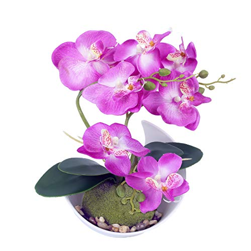 Artificial Potted Phalaenopsis Orchid Nice Decoration for Home, Office, Model Homes. Good for Desk,...