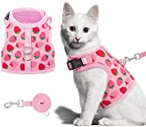 Strawberry <span class='highlight'>Cat</span> <span class='highlight'>Harness</span> and Lead Set- <span class='highlight'>Escape</span> <span class='highlight'>Proof</span> Adjustable Cute Kitty Puppy Floral Mesh Vest <span class='highlight'>Harness</span> for Walking, Pink