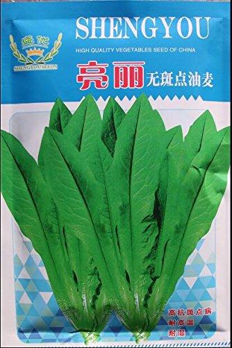 100 grammes/emballage d'origine quatre saisons graines de laitue semences de légumes bonsaï bricolage jardin maison livraison gratuite