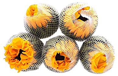 Blooms USA, Sunflowers Assorted, 5 Stems
