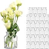 GIESSLE 30 Stück Mini Vasen Glasfläschchen kleine Dekoflaschen Väschen Flasche Vase Blumenvase Glasflaschen
