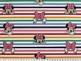 ab 1m: Baumwoll-Popeline, Digitaldruck, Minnie Mouse, 150cm
