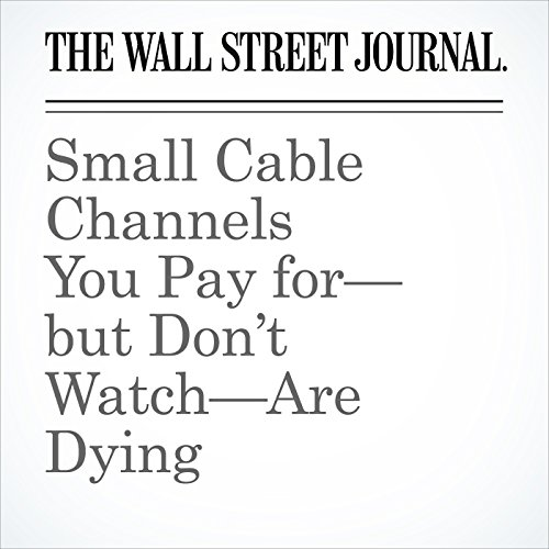 Small Cable Channels You Pay for—but Don't Watch—Are Dying copertina