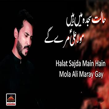 Halat Sajda Main Hain Mola Ali Maray Gay