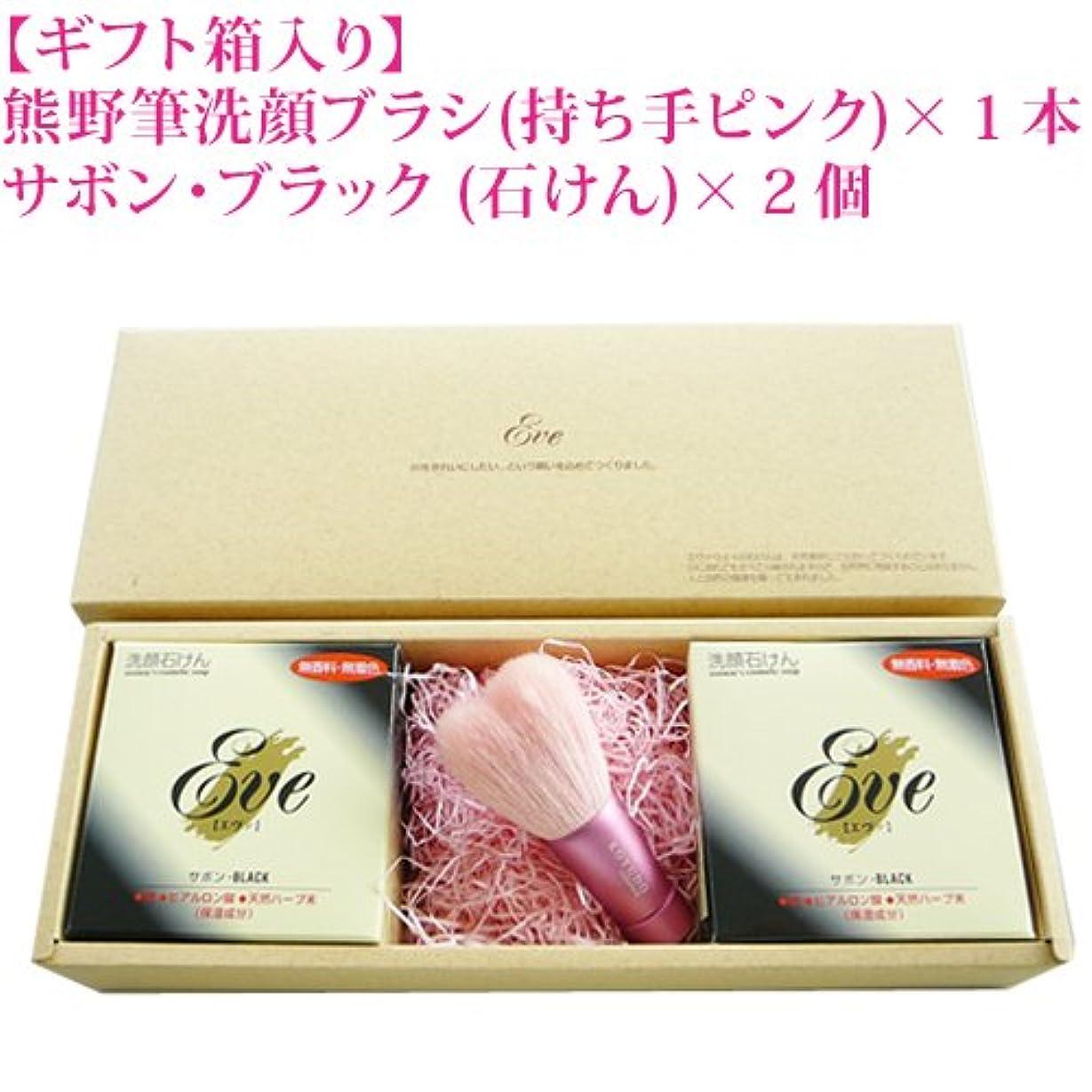 ライトニング服を片付ける鉄道熊野化粧筆 洗顔ブラシ&化粧せっけん セット ピンク