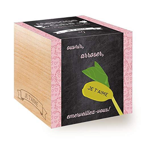 Feel Green Message Cube, Avec Haricot Magique Gravé Au Laser: T'Aime, Idée Cadeau (100% Ecologique), Grow-Your-Own/Kit Prêt-à-Pousser, Plantes Dans Des Cubes En Bois 7.5cm, Produit en Autriche