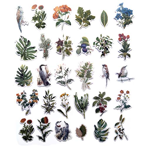 Beyong [60PCS] Plants and Birds Flowers Stickers, Watercolor Potted Plant Decals, for Phone, Pad, Laptop, Planner, Diary, Journal, Scrapbook