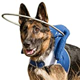 Muffin's Halo Blind Dog Harness Guide Device – Help for Blind Dogs to Avoid Accidents & Build Confidence – Ideal Blind Dog Accessory to Navigate Surroundings. Helped Over 30,000 Blind Dogs!… (3XL)