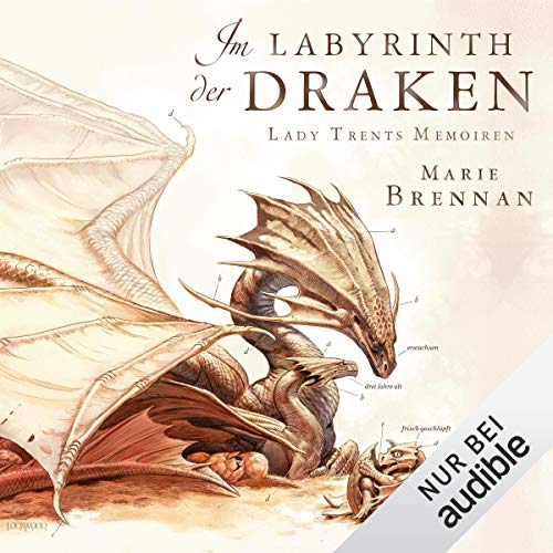 Im Labyrinth der Draken cover art