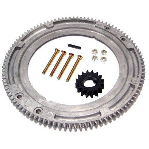 RA Flywheel Ring Gear Replacement - Replaces 392134, 399676, 696537