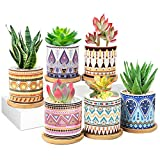 MAN NUO [2021 New Upgraded] Succulent Plant Pots 6 Pack with Drainage 3.1 Inch Ceramic Pots for Plants Indoor&Outdoor Garden Flower Planter Tray for All House Plants/Succulents/Flowers/Cactus